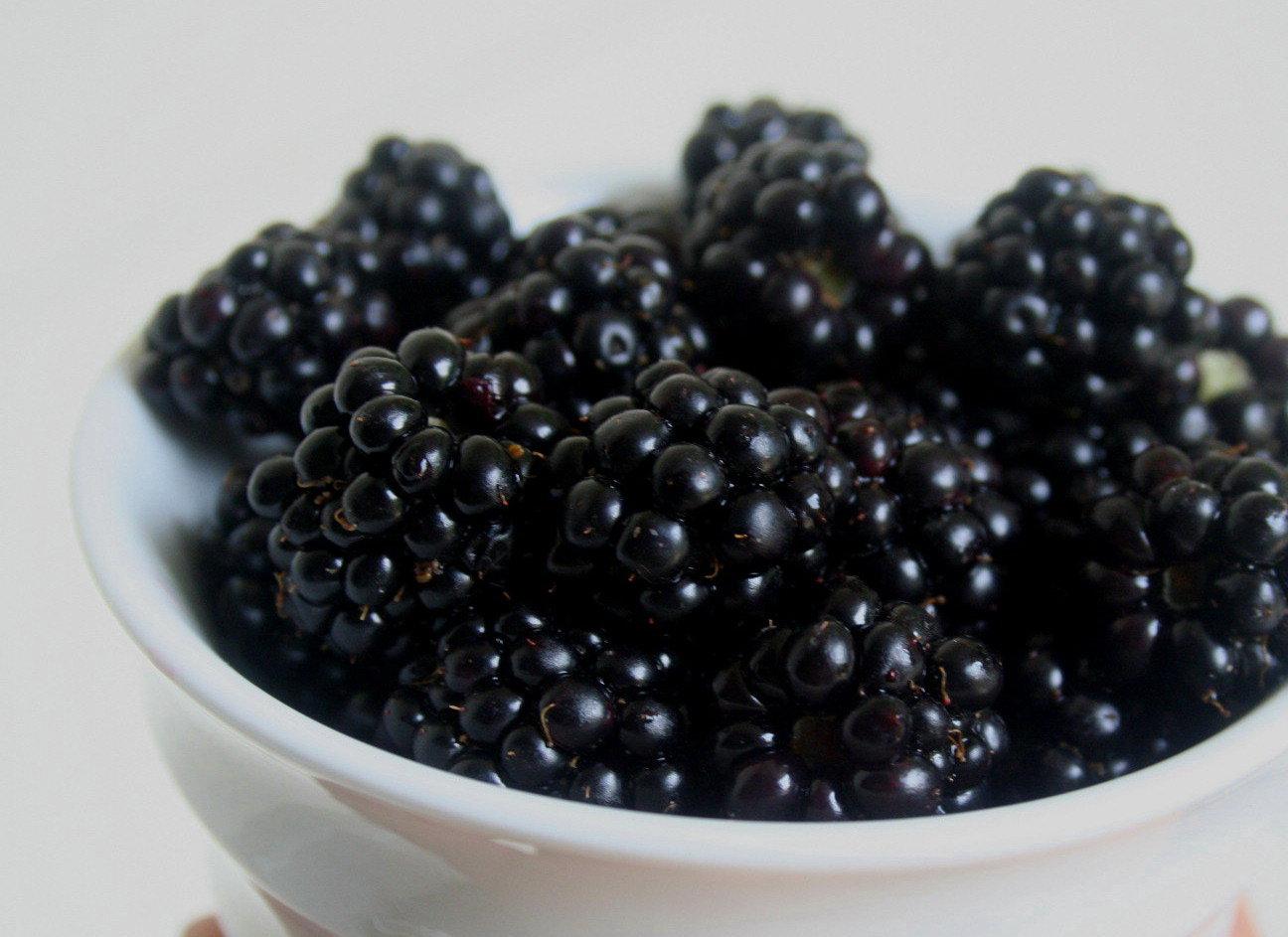 black berries Find great deals on ebay for black berries and black berries plant shop with confidence.