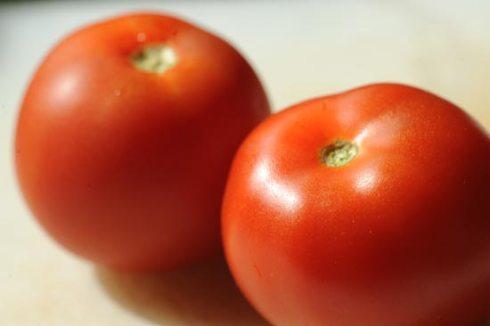 tomato_7074
